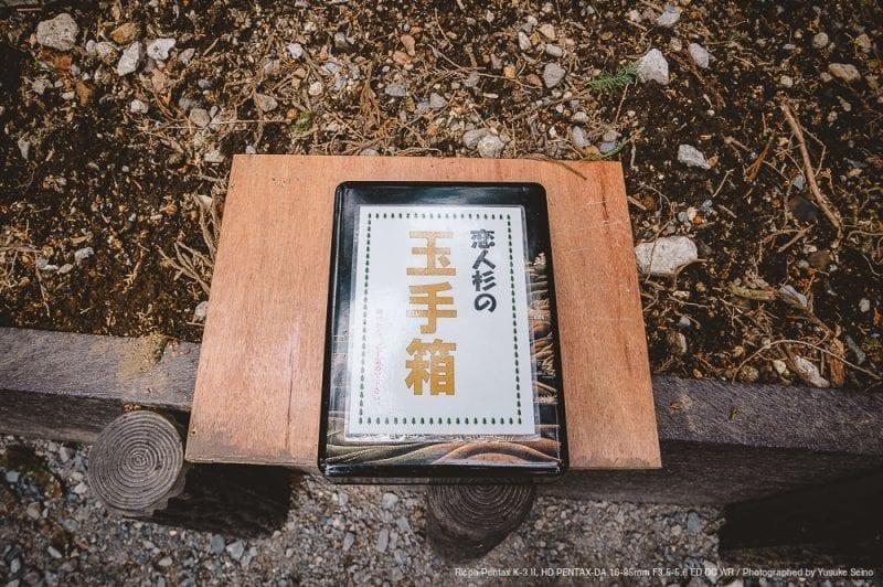 恋人杉の玉手箱の写真